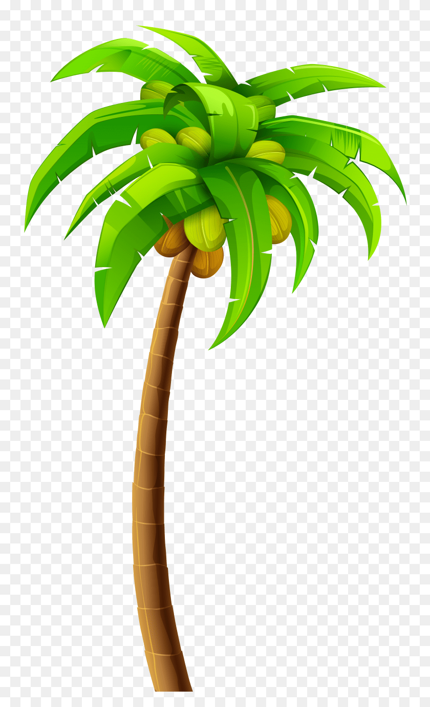 hight resolution of palm clipart clip art images free clipart palm sunday