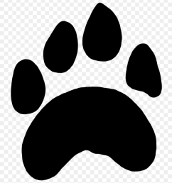 scratches clipart tiger paw scratch marks png [ 840 x 951 Pixel ]