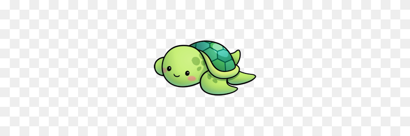 Cute Turtle Png Png Stock Com
