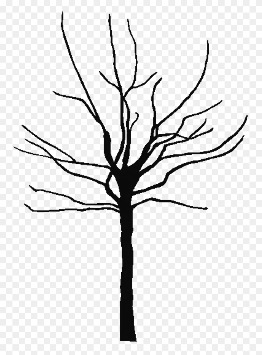 medium resolution of tree outline nature oak leaf clipart black and white