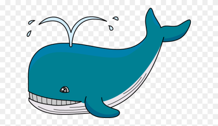 Whales Cliparts Beluga Whale Clipart Stunning free transparent png clipart images free download