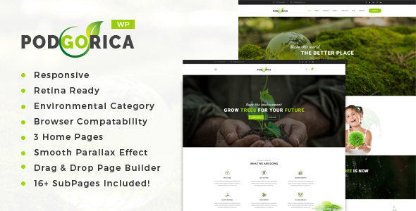 podgorica setting and renewable vitality wordpress theme download