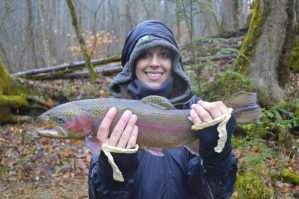 Cherokee, Fly Fishing, North Carolina, Smoky Mountains, Trophy Trout, Rainbow trout, Fly Fishing the Smokies, Fly Fishing Guides
