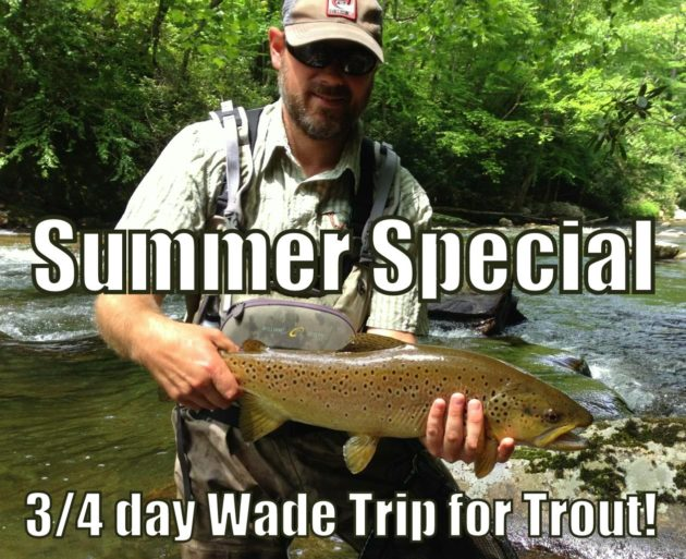 Fly Fishing Gatlingburg and Pigeon Forge, Fly Fishing Fun Trip, Gatlinburg Fly Fishing Guides,Fly Fishing Guides Gatlinburg Pigeon Forge Sevierville Tennessee