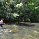 Hazel Creek Fly Fishing Day Trips, Fly Fishing the Smokies Hazel Creek Guides