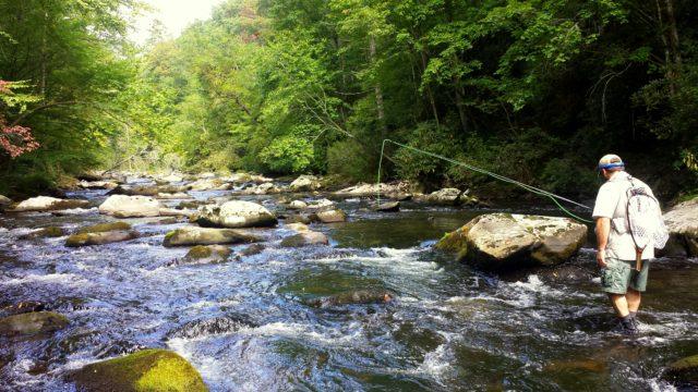 Hazel Creek Fly Fishing, Hazel Creek Day Trip Fly Fishing