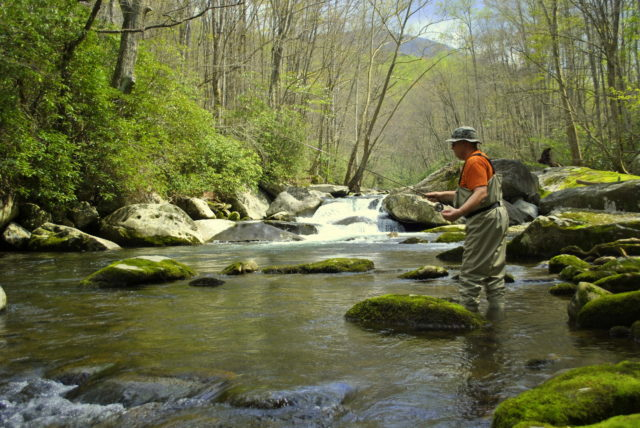 March Fly Fishing, Great Smoky Mountains National Park, Fly Fishing, Fly Fishing the Smokies, Little River, Gatlinburg, Pigeon Forge