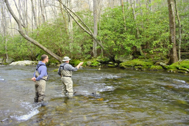 Fly fishing the smokies spring fly fishing for Fishing in pigeon forge tn