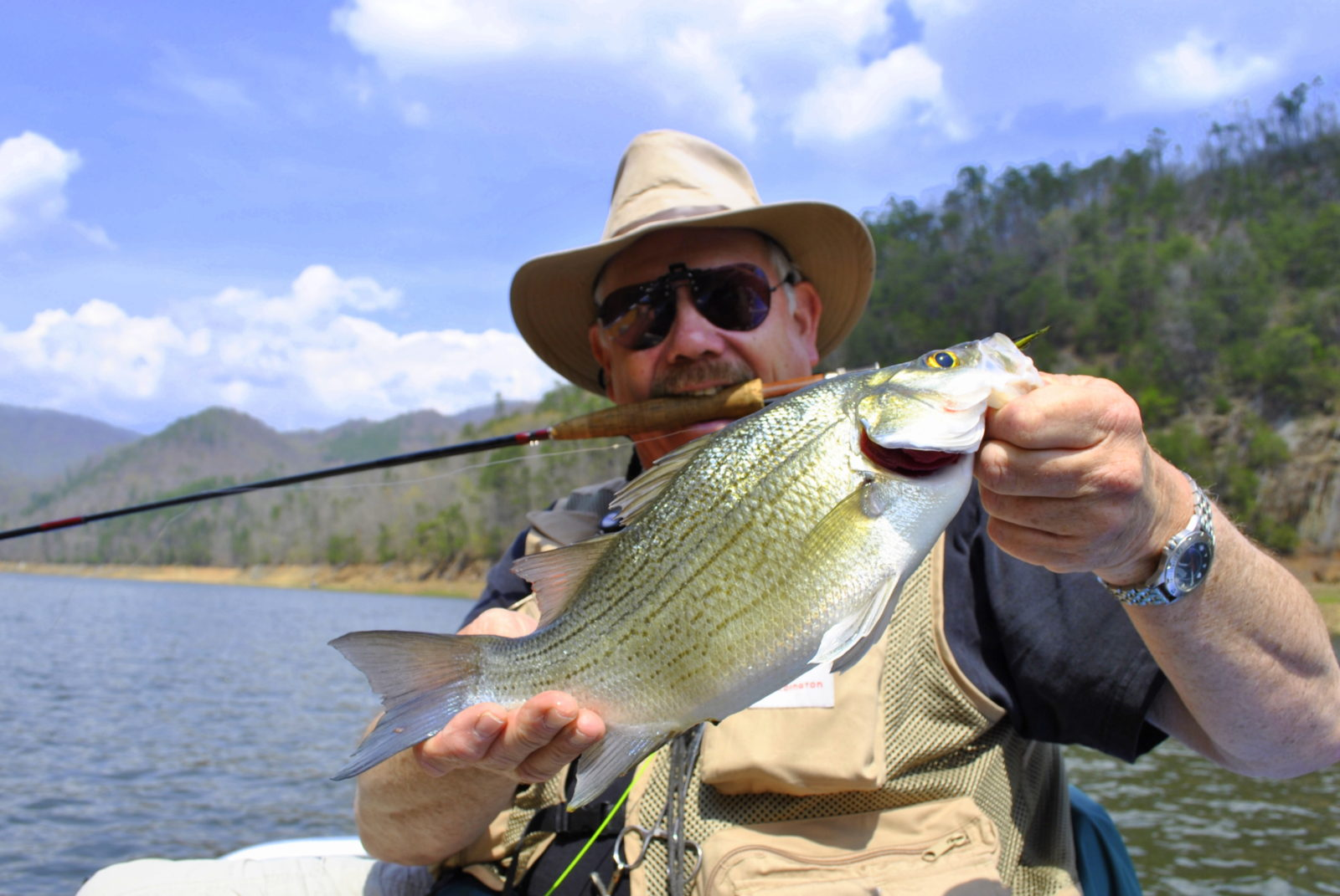 Fontana lake guided fly and spin fishing for bass trout for Balboa lake fishing