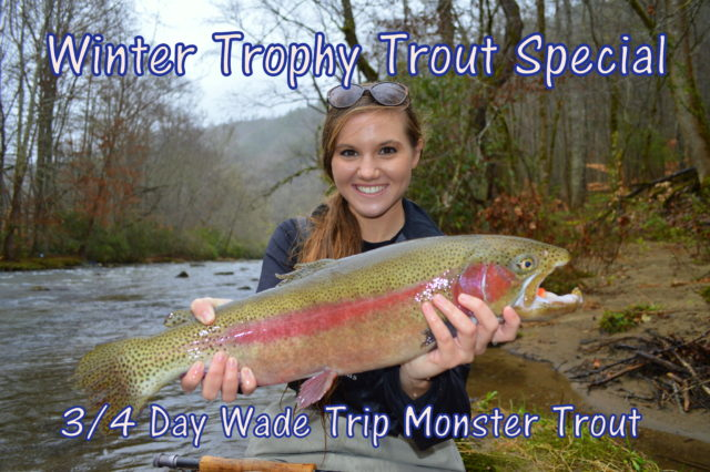 Winter Fly Fishing Specials, Winter Trophy Trout Special, Fly Fishing the Smokies, Fly Fishing Guides Great Smoky MOuntains Gatlinburg Bryson City Cherokee