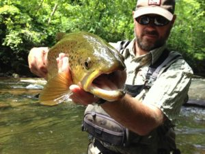 Fly Fishing the Smokies, guided fly fishing, Summer Trout Special, Brown Trout,