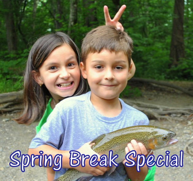 Spring Break Special, Fly Fishing the Smokies, Spring Specials, Gatlinburg, Pigeon Forge, Sevierville, Cherokee, Bryson City, Trout Fishing