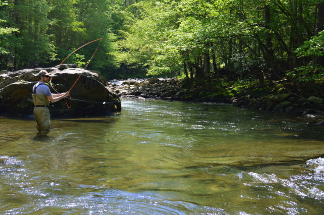 Wade trips fly fishing the great smoky mountains for Fly fishing smoky mountains