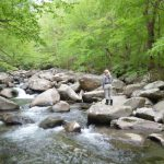 Fly Fishing the Smokies, Smoky Mountain Fly Fiishing Guides, Gatlinburg Fly Fishing Guide, Atlanta Fly Fishing Guides