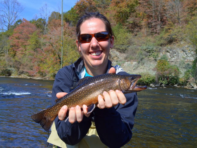 Great Smoky Mountains Fishing Repoort October 23rd, Fly Fishing the Smokies, Tuckasegee River Fishing Guides,