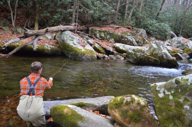Winter Fly Fishing, Fly Fishing the Smokies, Fly Fishing guides in Gatlinburg