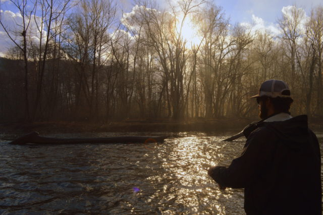 Great smoky mountains fishing report january 22nd for Smoky mountain fly fishing