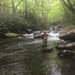 Gatlinburg Pigeon Forge Fly Fishing Guides and Trips, Fly Fishing the Smokies Bryson City Fly Fishing Guides Great Smoky Mountains