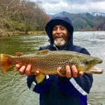 March Fly Fishing, Fly Fishing the Smokies, Best Fly Fishing Guides Trout Smoky Mountains, Tuckasegee River Brown Trout