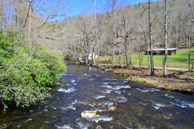 Spring Fishing, Hazel Creek Fly Fishing Report, Hazel Creek Fly Fishing Guided Trips and Tours, Fly Fishing Guide Hazel Creek NC,