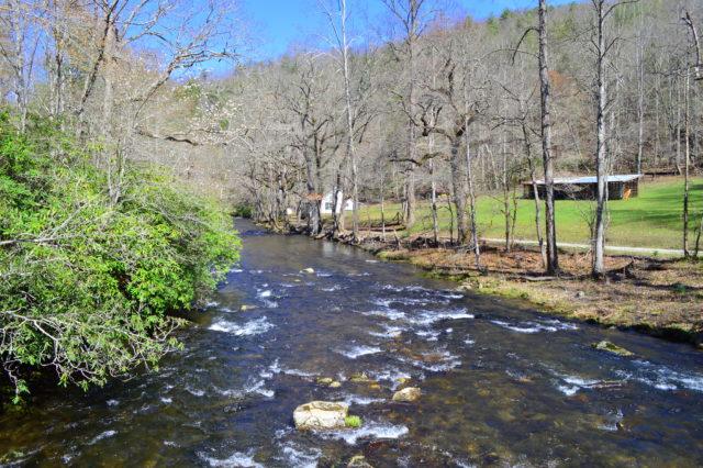 Spring Fishing, Hazel Creek Fly Fishing Report, Hazel Creek Fly Fishing Guided Trips and Tours, Fly Fishing Guide Hazel Creek NC,
