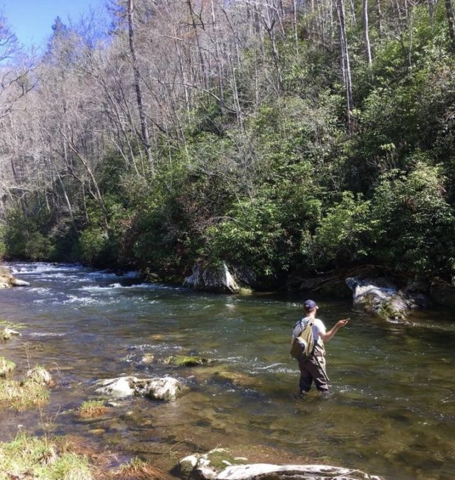 Great Smoky Mountains Fishing Report April 11th, Hazel Creek Fly Fishing Guides and Trips