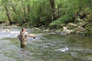 Maggie Valley Fly Fishing Guides, Waynesville Fly Fishing Guides