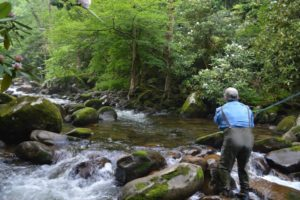 Maggie Valley Fly Fishing Guides, Waynesville Fly Fishing Guides, Great Smoky Mountains NAtional PArk Fly Fishing, Fly Fishing the Smokies,