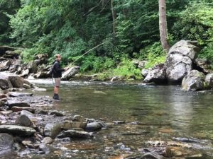 Great Smoky Mountains Fishing Report August 23rd, Fly Fishing the Smokies, Maggie Valley Fly Fishing Guide, Maggie Valley Fly Fishing, Gatlinburg Fly Fishing Guide, Bryson City Fly Fishing Guide, Maggie Valley Fly Fishing Guide