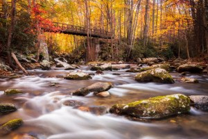 Fall Fly Fishing, Great Smoky Mountains National Park Fly Fishing Guides,