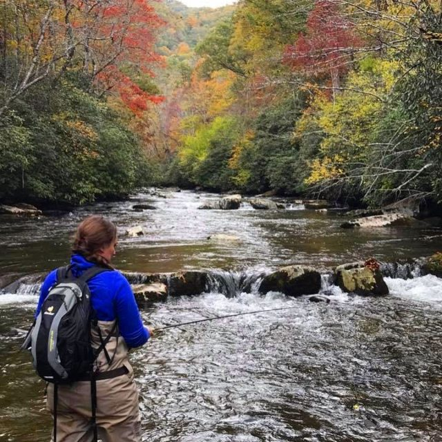 November Fly Fishing Smoky Mountains, Fly Fishing the Smokies, Great Smoky Mountains Trout Fishing,