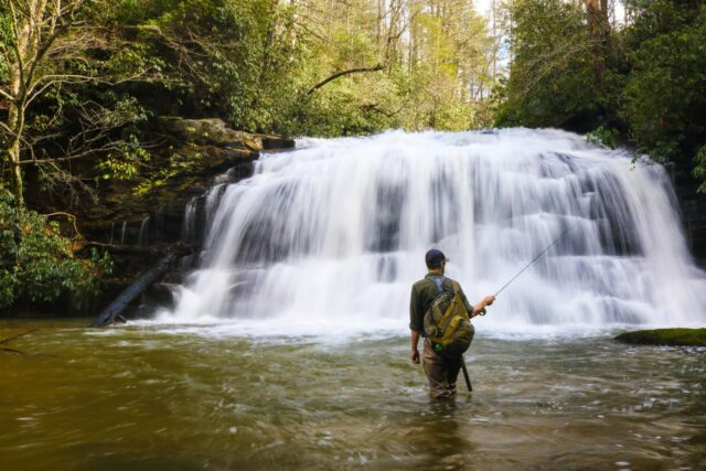 Spring Break Special Fly Fishing Guides Trout Gatlinburg Pigeon Forge Cherokee Bryson City, Fly Fishing Guides the Great Smoky Mountains National Park Gatlingburg Bryson City Cherokee Pigeon Forge.