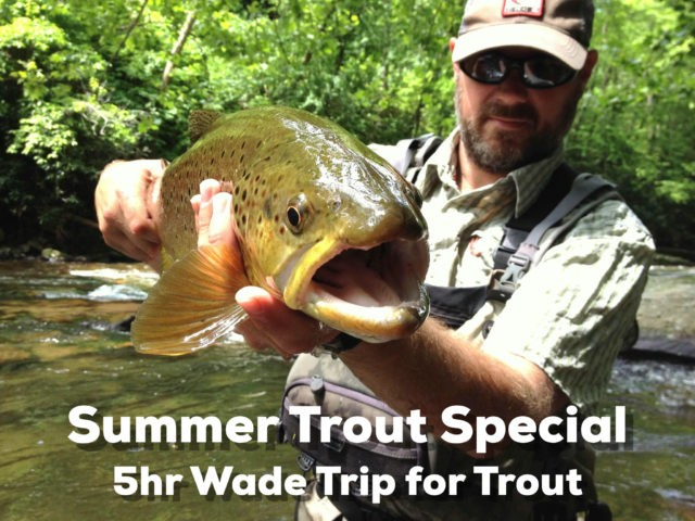 Gatlinburg Fly Fishing Guides Trout. Pigeon Forge Fly Fishing Guides Trout, Bryson City Fly Fishing Guide Trout, Cherokee Fly Fishing