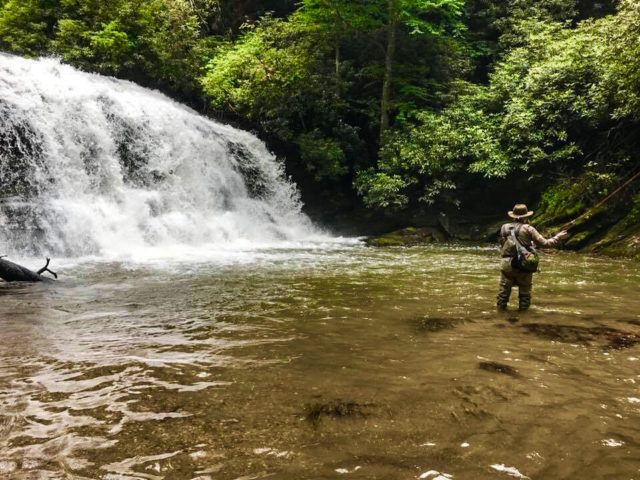 Brook Haven Fly Fishing, Fly Fishing the Smokies,