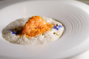 Tiger Prawn in Coconut emulsion