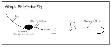 Fishfinder-Rig