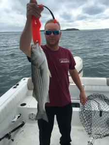Another Boston Striper for Greg
