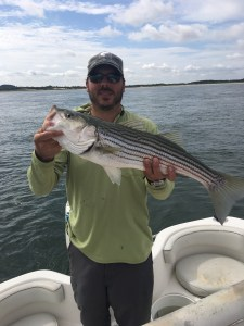 "26"" North Shore striped bass"