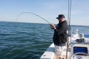 Craig hooked up on a Cape Cod Black Sea Bass