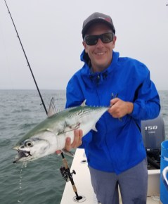 Cape Code False Albacore on light tackle