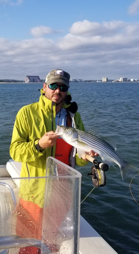 Fall Run Stripers on the Fly in Boston Harbor