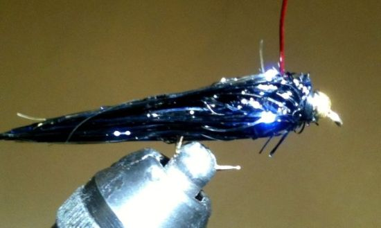 ... the Bipolar Balanced Leech Fly Pattern