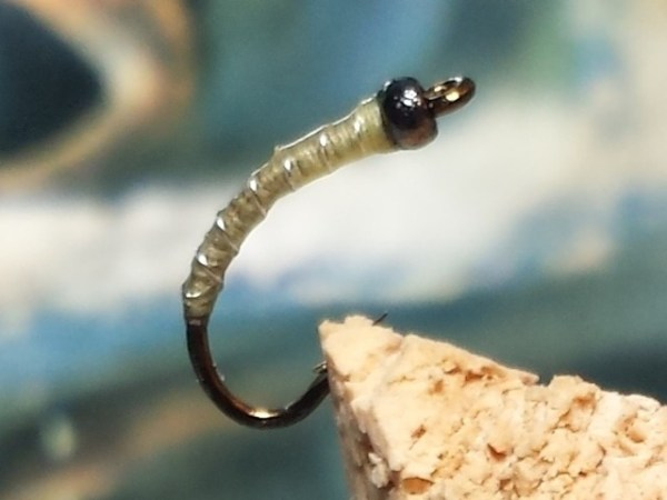 Fly Fishing Chaoborus glassworms phantom midges