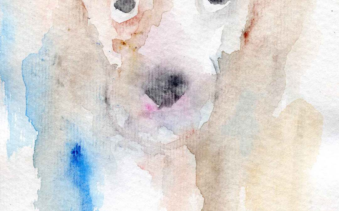 Jack Russell – Daily Painting #574  (SOLD)