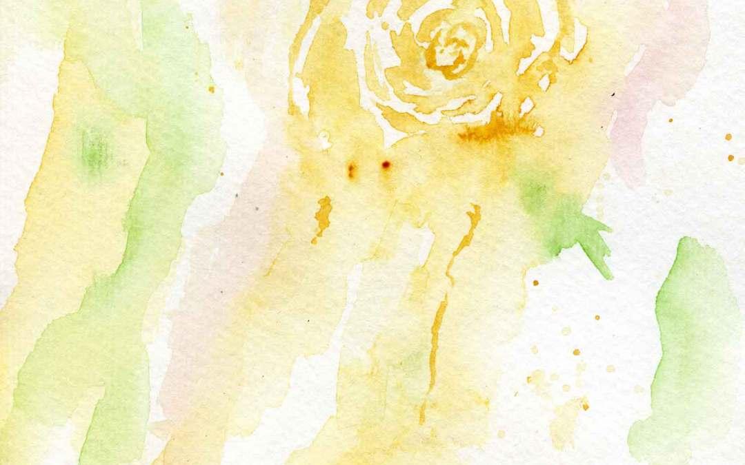 Golden Rose – Daily Painting #580