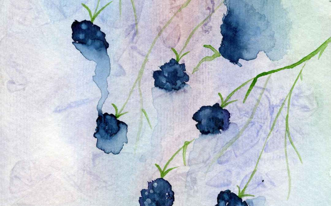 Blackberry – Daily painting #589 (SOLD)