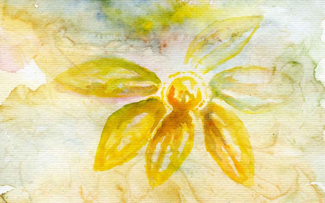 Yellow Flower – Daily Painting #596 (SOLD)