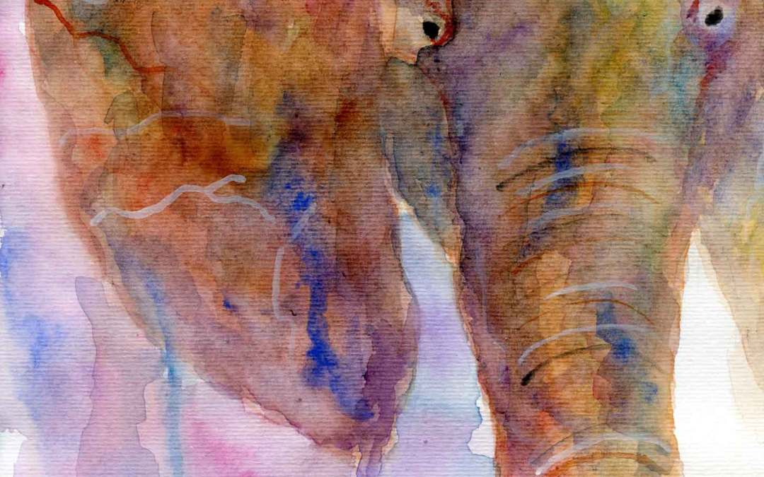 Elephant – Daily painting #615 (SOLD)