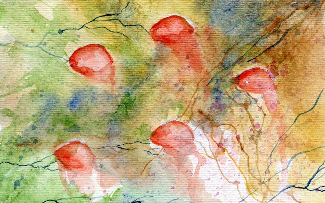 Abstract Rosehip – Daily Painting #627 (SOLD)