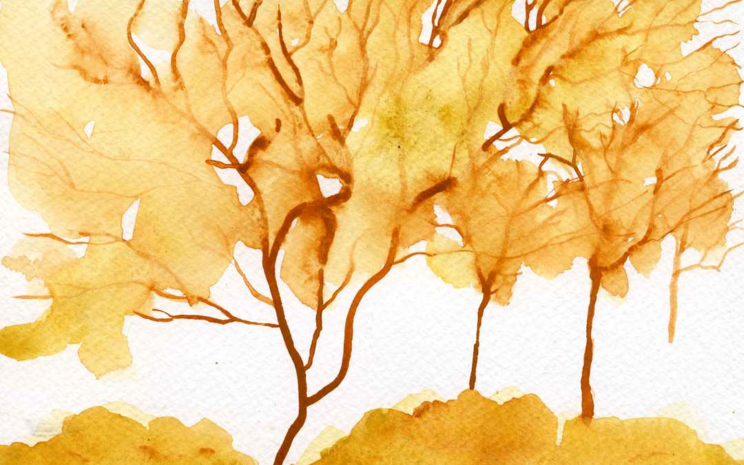 Autumn Trees – Daily painting #663 (SOLD)